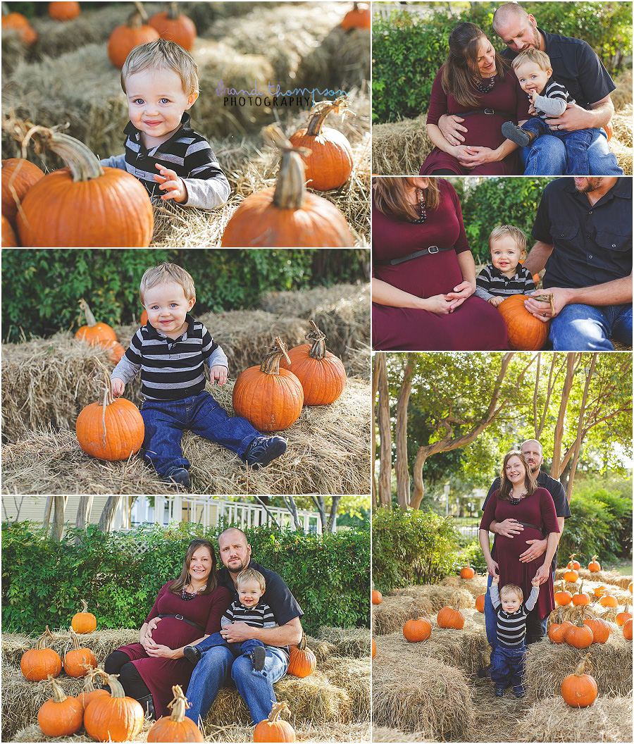 family maternity photos in mckinney, tx during the fall