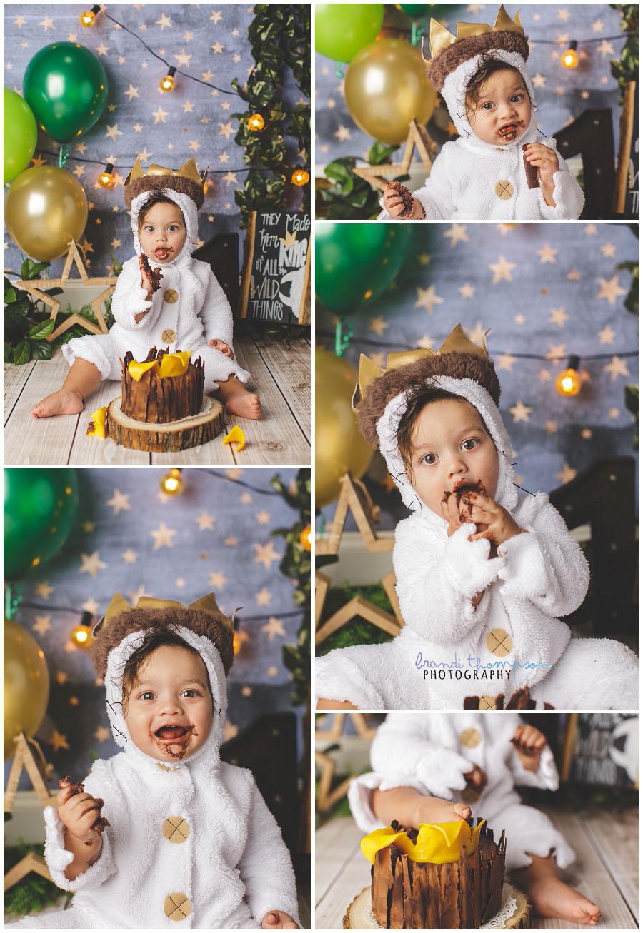 plano cake smash photographer, the colony cake smash photographer, where the wild things are cake smash