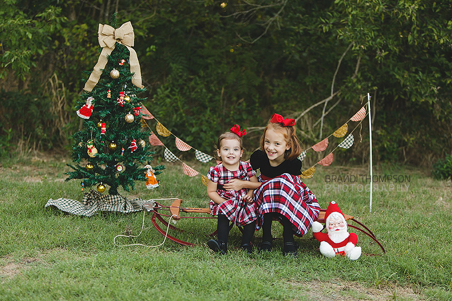 plano holiday christmas mini sessions