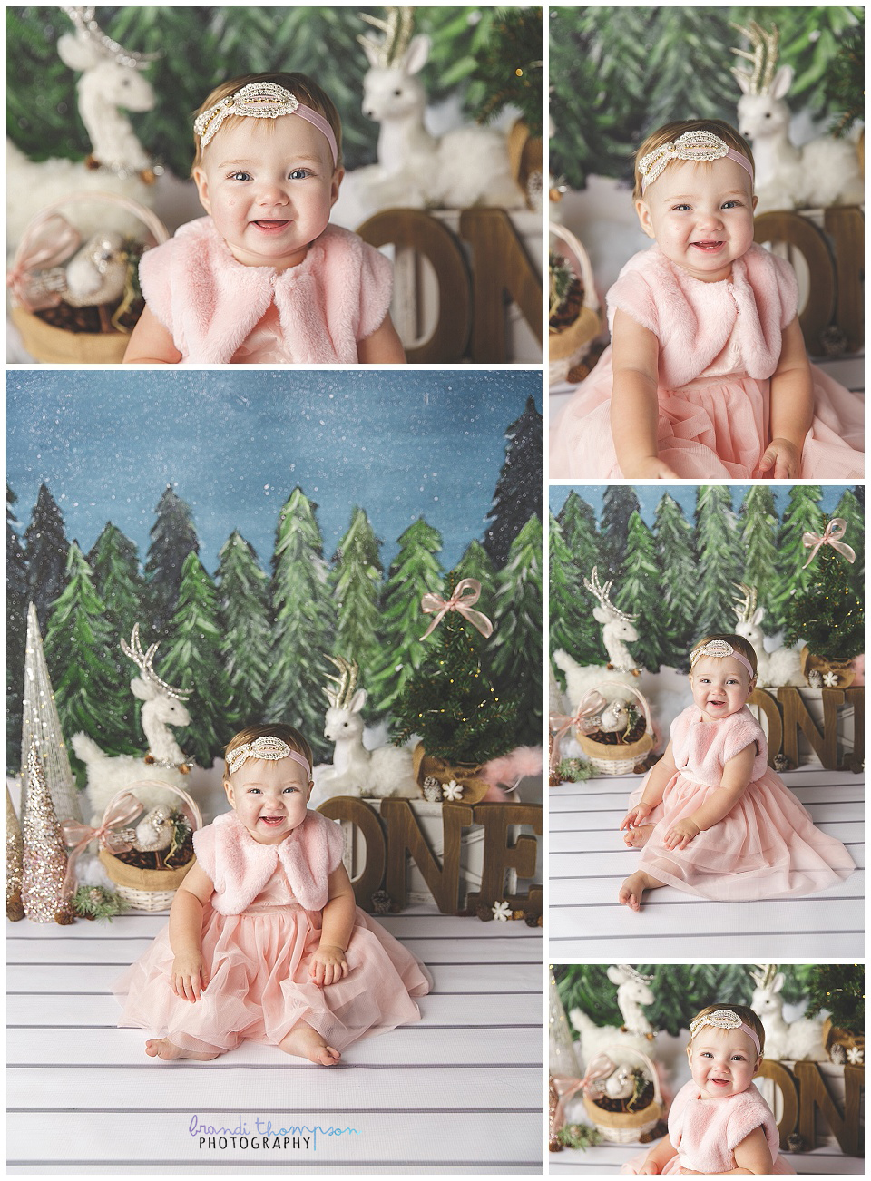 first birthday cake smash with winter theme and touches of pink, with baby girl in pink dress, plano, tx studio